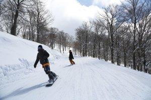 東急リゾートサービス スキージャム勝山